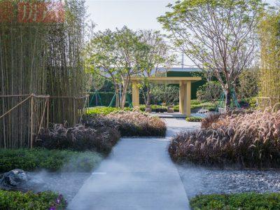 朗云花园4
